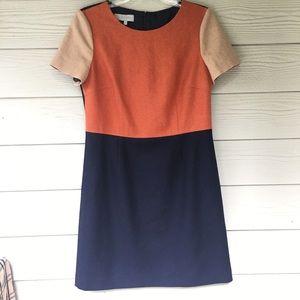 NEW HOBBS London Dress Gorgeous Size 8